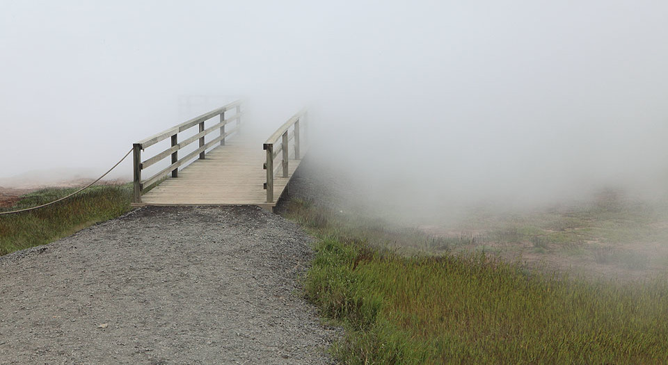 Geothermal Fog