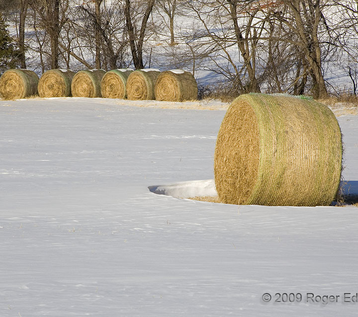 Hay Bales in the Snow