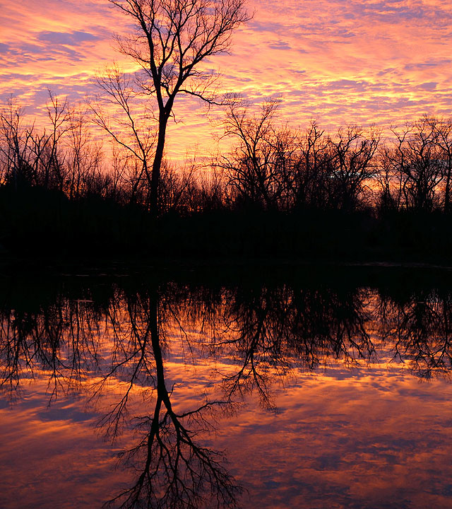 Reflective Winter Sunrise