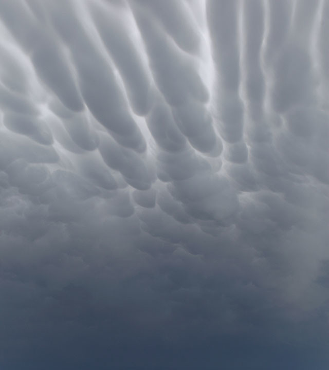 Striped Mammatus