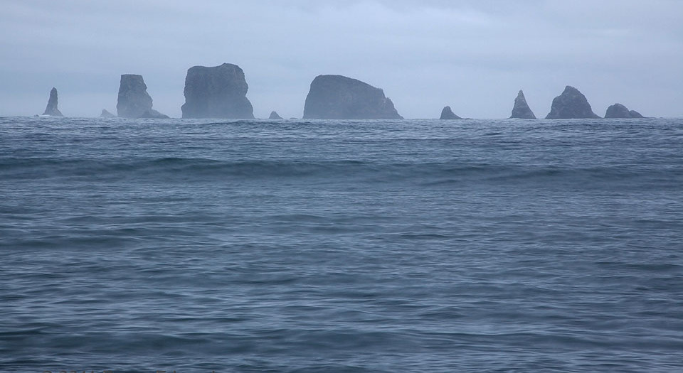 Seastack Skyline of the Quillayute Needles