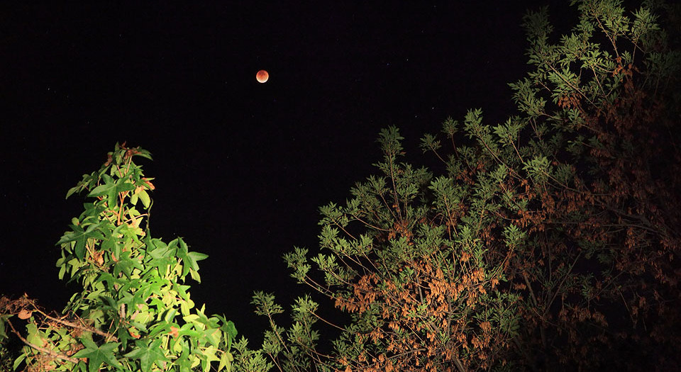 Super Blood Harvest Moon Tetrad