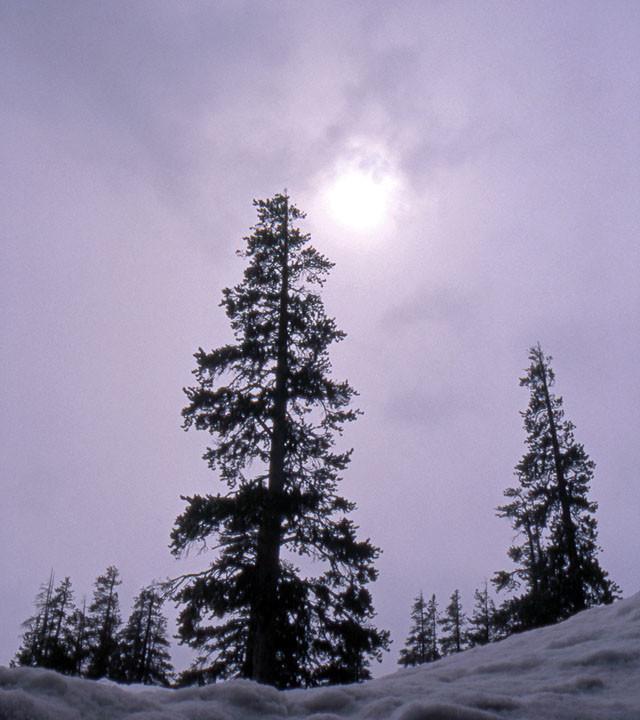 Altostratus in the High Sierra