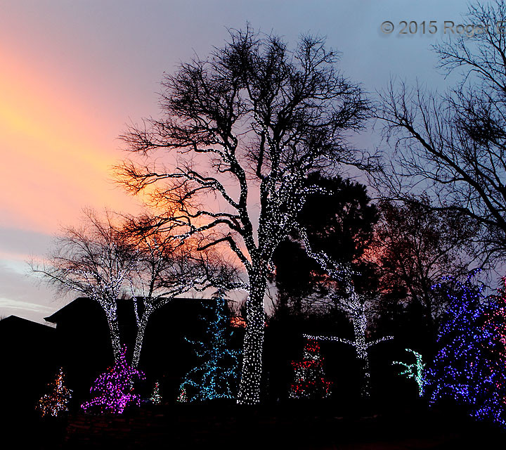 Holiday Light:  Land and Sky