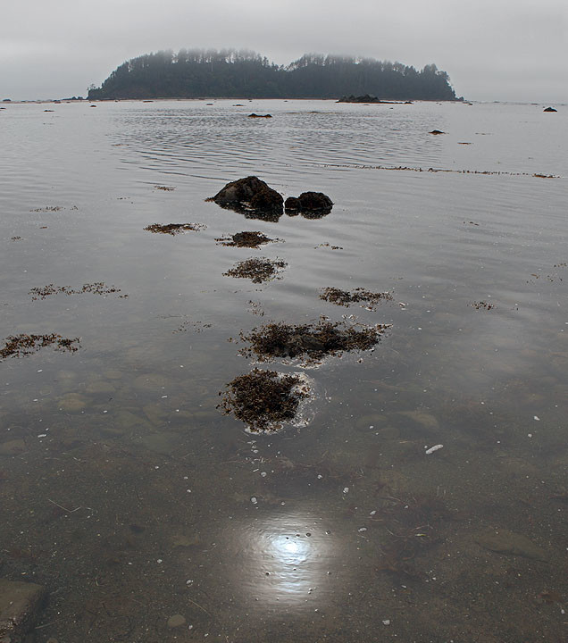 Foggy Reflections at Cape Alava