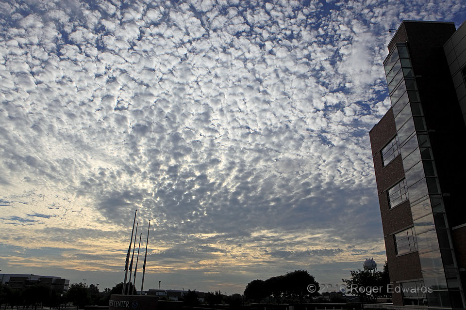 Morning Altocumulus Field