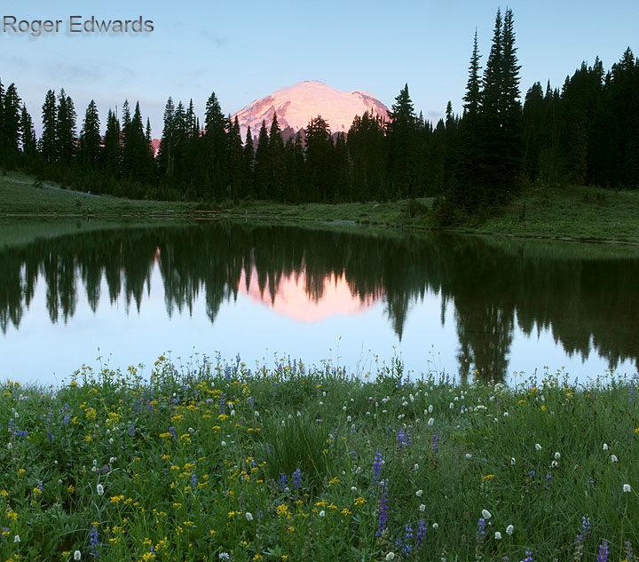 Dawn's Glow: Mount Rainier