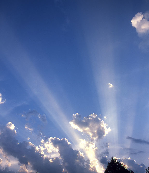 Crepuscular Rays