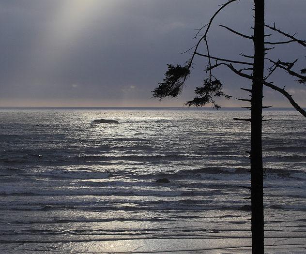 Coast Light